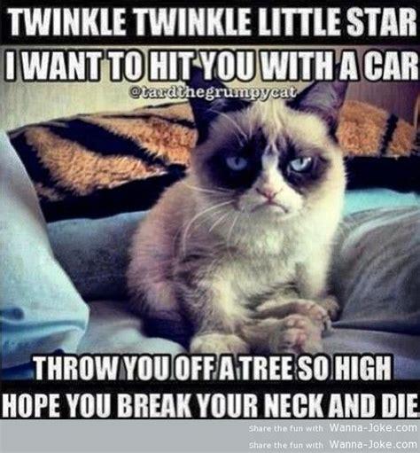 cat song grumpy cat s song