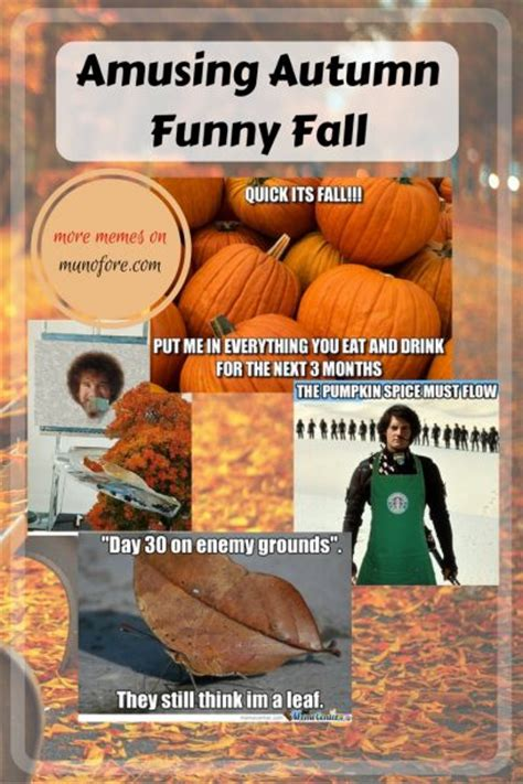 Autumn Memes - amusing autumn memes plus friday frivolity munofore