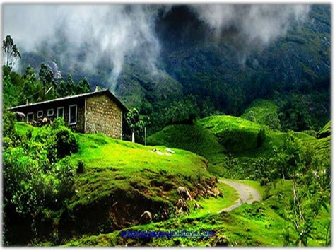 home beauty amazing natural beauty of nature