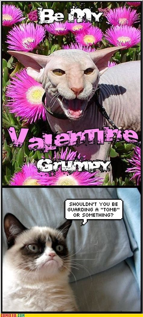 Be My Valentine Meme