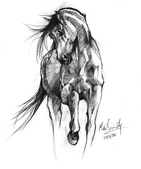Sketches Horses by Best 25 Sketch Ideas On Sketches Of