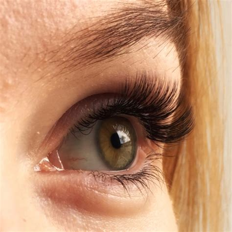 Silk Eyelash Extension silk eyelash extensions archives the lash addict