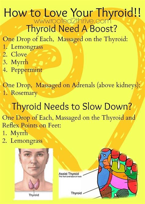 Does Detox Hurt Thyroid by 17 Best Images About A Reflexology Foot On
