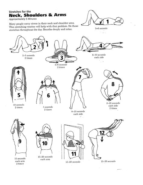 Leg Exercises Sitting At Desk Routine Stretches To Help Your Neck Shoulders And Arms