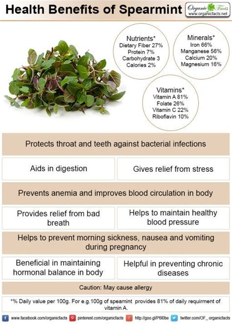 Health King Detoxer Herb Tea Benefits by 227 Best Culinary Herbs Spice Images On
