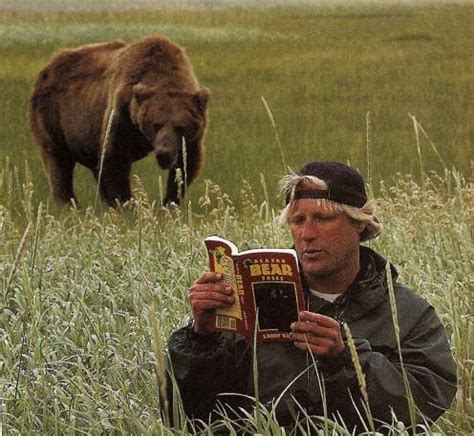 timothy treadwell bear attack the whiteboard advanced grizzly man