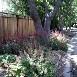 Landscape Design Davis Ca Ecological Landscape Design Landscaping Davis Ca