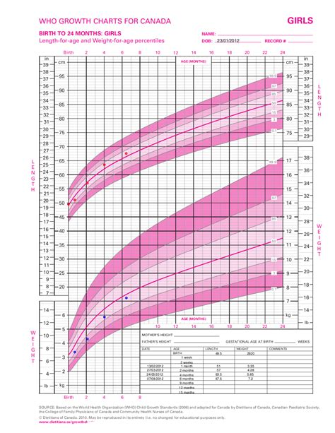 height weight chart template for girl