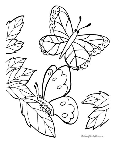 coloring book ideas 50 best coloring pages butterflies images on