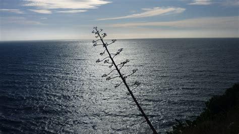 imagenes de paisajes que inspiran tranquilidad paz tranquilidad y relajacion imagen foto paisajes
