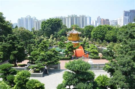 Garden Hong Kong by Nan Lian Garden Hong Kong China Top Tips Before You Go