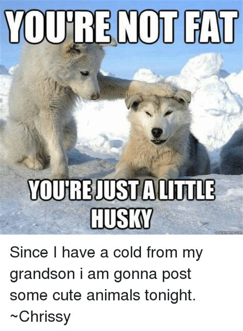 my has a cold you re just alittle husky since i a cold from my grandson i am gonna post