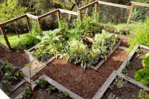 tiered vegetable garden on a hillside