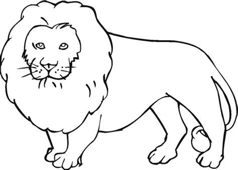 lion template animal templates free premium templates