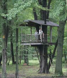 Tree House Backyard by Tree Houses A Kid S Eye View Of The World Toledo Blade