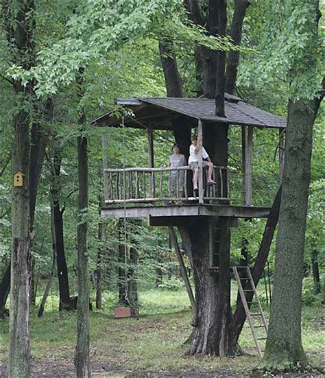 treehouse for backyard build a freestanding tree houses just b cause