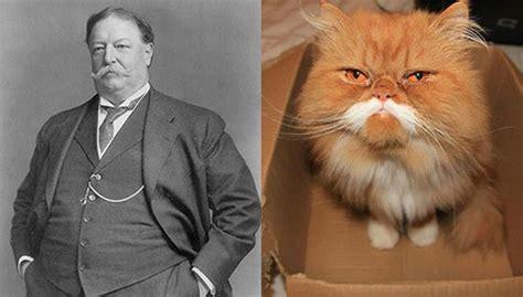 fat president stuck in bathtub 13 animals that look remarkably like presidents freak 4 my pet