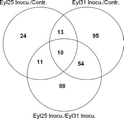 venn diagram analysis toxins 03 00766 f005 transcriptional profiles uncover