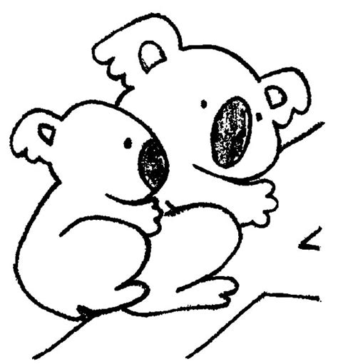coloring pages of koala gallery for gt koala coloring