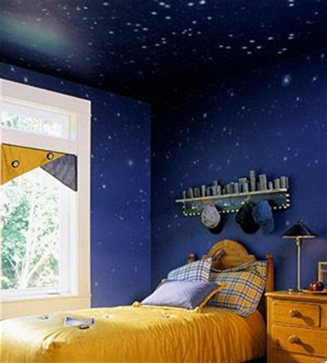 Paint By Number Wall Murals For Adults 17 best images about star ceiling ideas on pinterest
