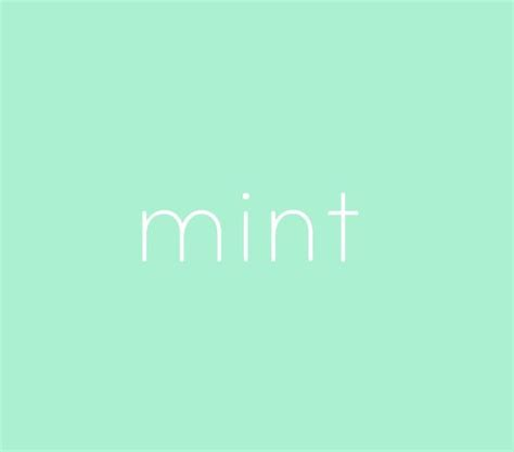 mint blue color best 25 mint color ideas on