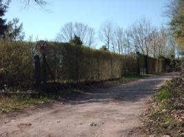 Garten Mieten Langen Hessen by Garten 406 Qm Ausgewiesene Kleingartenanlage In Langen