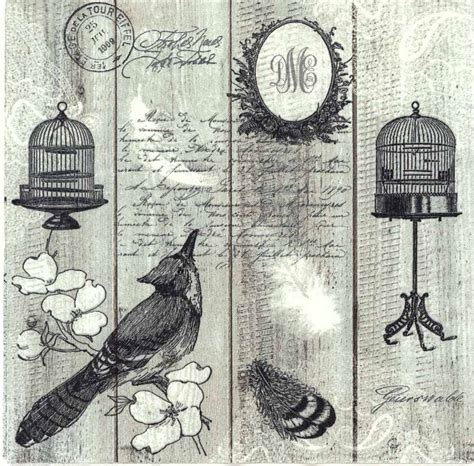 decoupage paper napkins of vintage bird with birdcage and