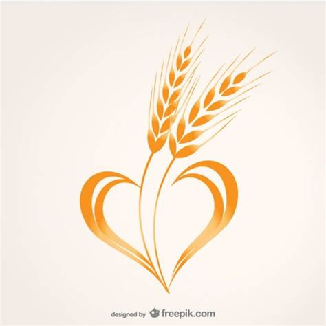 wheat tattoo designs 8 best wheat images on wheat