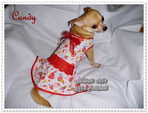 Baju Polkadot Anjing Kucing golden chi s petz fashion collection serial 0 4