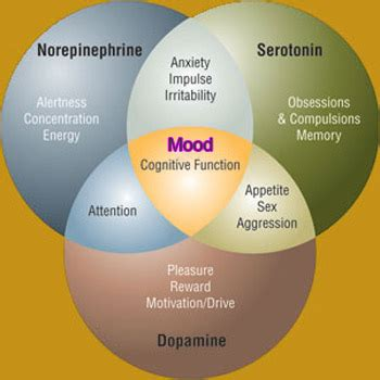 chemical imbalance mood swings bipolar disorder and health problems adolescent bipolar