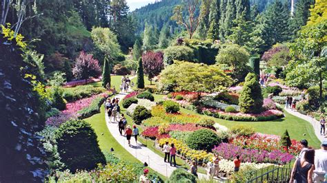 Vancouver Gardens by Lockwood Lavender Farm Butchart Gardens In Vancouver