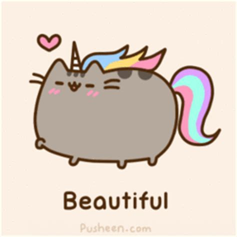 img pusheen pinterest pusheen kawaii and pusheen cat