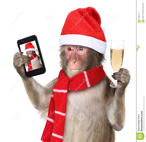 monkey santa search results for merry with santa claus