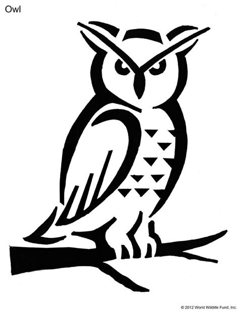 printable owl pumpkin patterns best 25 owl pumpkin stencil ideas on pinterest owl