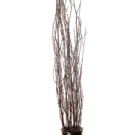 Birch Decorative Branches by Decorative Branches Iced Birch Branches