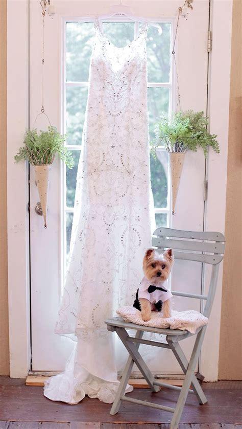Wedding Attire Dogs by 1000 Ideas About Wedding Attire On