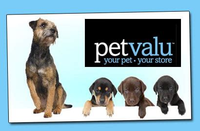 pet valu wash wagjag 21 for a pet grooming service at pet valu a 50 value