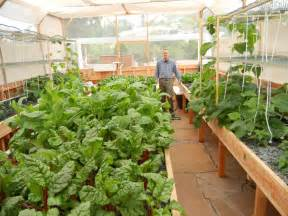 Small Home Fish Farm Our Aquaponic S Course Is Fast And Easy Join The