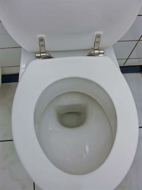 Toilet That Shoots Water Up Don T You It When You Re Taking A Dump And The Water