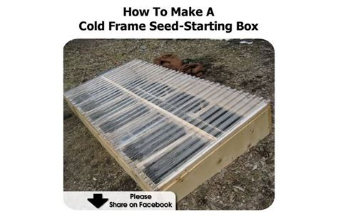 how to make a cold frame seed starting box