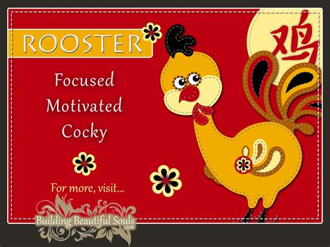 rooster meaning in new year zodiac rooster year of the rooster