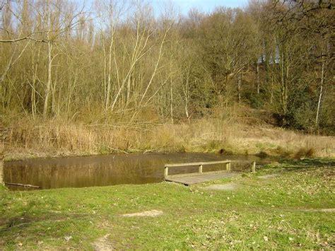 the secret pond erddig the secret pond erddig