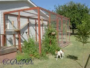 how to build an outdoor cat enclosure or catio teediddlydee