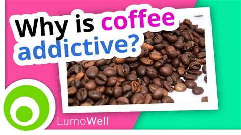 Coffee Detox Side Effects by Caffeine Addiction Side Effects Withdrawal Symptoms And