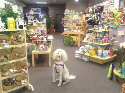 puppy store in mall new pet store will open in palisades center mall to promote pet adoptions new city