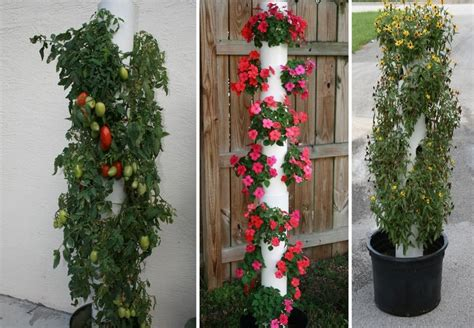Vertical Gardening Planters How To Make Your Own Vertical Planter Guest Gardeners