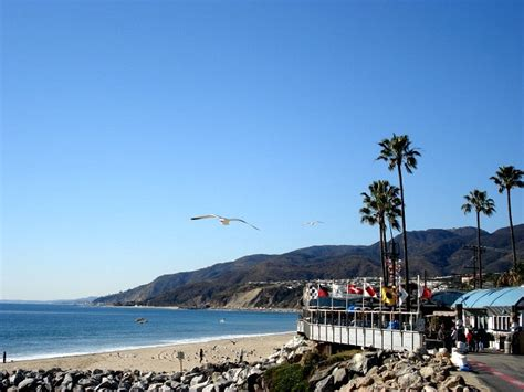 Restaurants On Pch - 9 best pup n taco remember images on pinterest tacos pup and fast foods