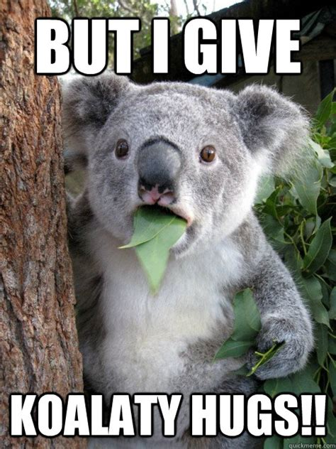Meme Hug - but i give koalaty hugs diskoalafied quickmeme