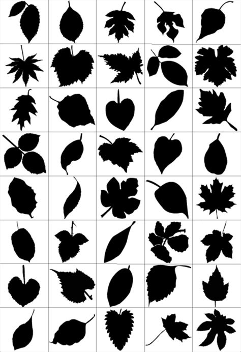 leaf pattern brush 80 leaf silhouettes free vector brush pack free vector