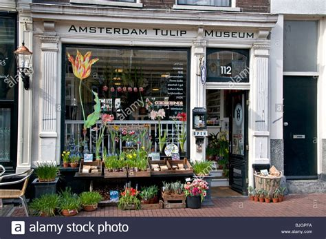 amsterdam museum flowers amsterdam tulip museum flower shop jordaan the netherlands